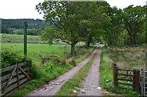 NS0373 : Track near Rhubodach by Jim Barton