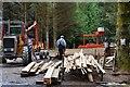 NS0373 : Sawmill work, forest above Rhubodach by Jim Barton
