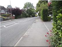 TQ2160 : Alexandra Road, Epsom by David Howard