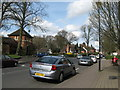 SP0481 : On Sycamore Road-Bournville, Birmingham by Martin Richard Phelan