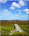 SE5892 : Boundary Stone Cairn, Laskill Pasture Moor by Scott Robinson