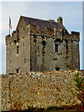 M3810 : Dunguaire Castle along N67 east of Kinvarra by Suzanne Mischyshyn