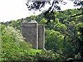 NT2340 : Neidpath Castle Peebles by DTwigg