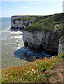 TA2472 : East Scar View, Flamborough by Scott Robinson