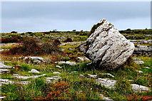 M2300 : County Clare - Poulnabrone Dolmen Area - Burren Terrain by Suzanne Mischyshyn