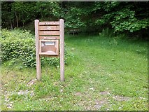 SD3787 : Entrance to Great Knott Wood by David Dixon