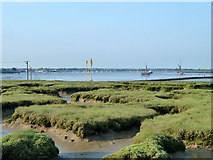 TL8605 : Saltings near Thorney Island tidal causeway by Robin Webster