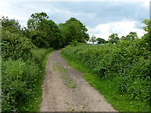 SP4788 : Heading north along the Fosse Way by Mat Fascione