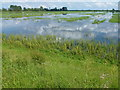 TL4583 : Summertime flooding - The Ouse Washes by Richard Humphrey