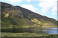 G5788 : Coillte Feannaid by Anne Burgess