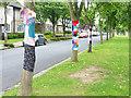 SJ3384 : Tree coats, Port Sunlight by Oliver Dixon