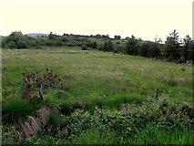 G9828 : Cordressogagh Townland by Kenneth  Allen