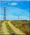 NZ8603 : Pylon Line, Parsley Beck Rigg by Scott Robinson