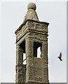 NJ6664 : The bellcote at St Brandan's Church, Inverboyndie by Walter Baxter