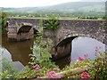 ST3894 : The bridge, Newbridge on Usk by Robin Drayton