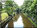 SJ9493 : Peak Forest Canal by Gerald England