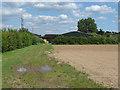 TQ0773 : Matfield Farm by Alan Hunt