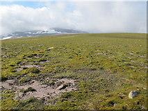 NH9802 : Cairngorm Plateau by Alan Hodgson