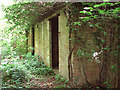 TF9314 : Ex RAF/USAAF building  in Honeypot Wood by Evelyn Simak