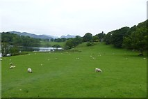 NY3404 : Loughrigg Tarn and The How by DS Pugh