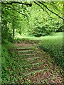 SP9001 : Great Missenden - old steps to north of church by Rob Farrow