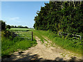 TM3779 : Field entrance off Wash Lane by Adrian Cable