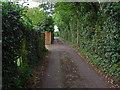 SU8066 : Access Road off the A321 by Alan Hunt