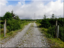 G9428 : Access road, Greaghnaglogh by Kenneth  Allen