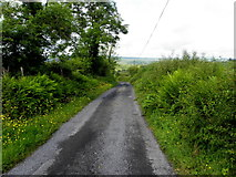G9227 : Road at Tullintowell by Kenneth  Allen