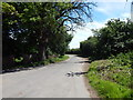 TM3036 : Gulpher Road towards Old Felixstowe by Hamish Griffin