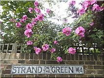 TQ1977 : Old road name sign with roses, Strand on the Green by David Howard