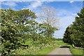 NS4837 : Minor road at Burnbank Bridge by Leslie Barrie