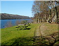 SH5761 : Lakeside picnic benches near Cei Llydan railway station by Jaggery