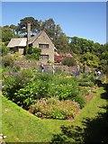 SX9050 : Rill Garden at Coleton Fishacre by Derek Harper