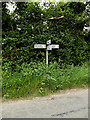 TL9654 : Roadsign on Benton Lane by Geographer