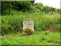 TL9256 : Milestone on Cockfield Road by Geographer