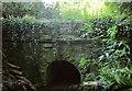 SX4157 : Path under former railway line near Antony Passage by Derek Harper