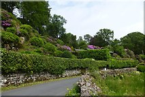 NY3307 : Road to Grasmere by DS Pugh