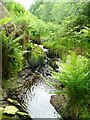 SE0909 : Rams Clough, downstream of the confluence with Middle Clough by Humphrey Bolton
