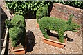 SZ5194 : Topiary pigs by Philip Halling