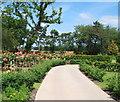 TQ4471 : Kemnal Park Cemetery, Chislehurst BR7 by David Hallam-Jones
