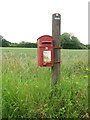 TF9905 : George V postbox on High Common by Evelyn Simak