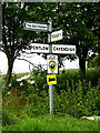 TL8245 : Roadsign off the B1064 Pentlow Hill by Adrian Cable