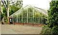 J3372 : The Tropical Ravine, Botanic Gardens, Belfast - June 2014(2) by Albert Bridge