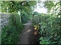 NY1131 : Back Lane (track) Cockermouth by Steve  Fareham