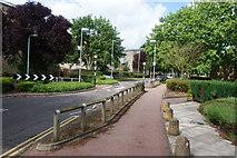 TL4661 : Traffic-calming on Campkin Road by Bill Boaden