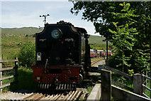 SH5752 : Departing for Caernarfon by Peter Trimming