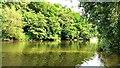 SO5516 : Downstream view, River Wye, Symonds Yat by Brian Robert Marshall
