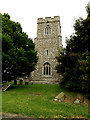 TL8348 : St. Mary the Virgin Church Tower by Geographer