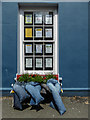 SN7634 : Unusual Flower Bed, Market Square, Llandovery by Christine Matthews